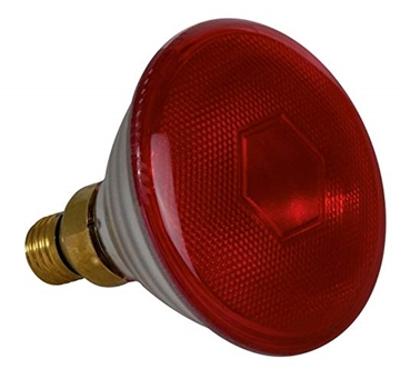 Εικόνα της Λάμπα 150w Edison Screw Ruby PAR38 Infrared Reflector Κόκκινη Sylvania